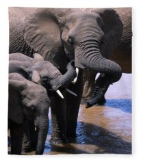A Refreshing Moment Fleece Blanket