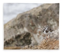 A Ruddy Turnstone Perched On The Rocks Fleece Blanket
