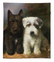 A Scottish And A Sealyham Terrier Fleece Blanket