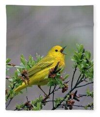A Songbird Fleece Blanket