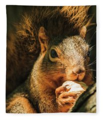 A Squirrel And His Nut Fleece Blanket