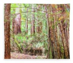 A Stand Of Redwood Trees. Fleece Blanket