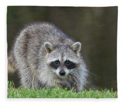 A Surprised Raccoon Fleece Blanket