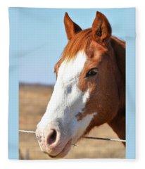 A Sweet Face - Horse Portrait Fleece Blanket