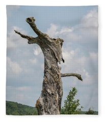 A Tree With A Face 2017-3 Fleece Blanket