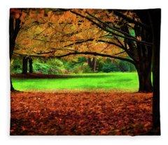 A Walk In The Park Fleece Blanket