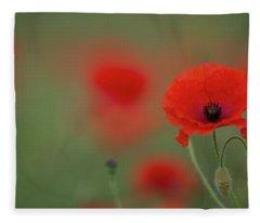 A Wild Poppy Fleece Blanket