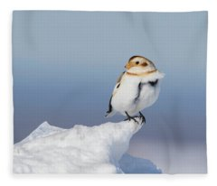 A Windy Day Fleece Blanket