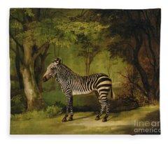 A Zebra Fleece Blanket