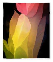 Abstract 082312 Fleece Blanket