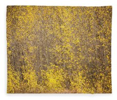 Abstract Of Aspens Fleece Blanket