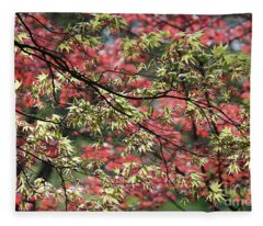 Acer Leaves In Spring Fleece Blanket