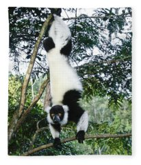 Acrobatic Lemur Fleece Blanket