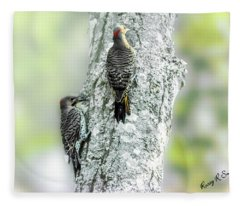 Adult And A Young Northern Flicker. Fleece Blanket