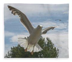 Adult Seagull In Flight Fleece Blanket
