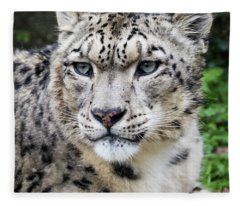 Adult Snow Leopard Portrait Fleece Blanket