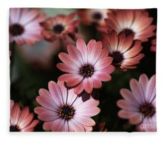 African Daisy Zion Red Fleece Blanket