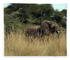 African Elephant In Tall Grass Fleece Blanket