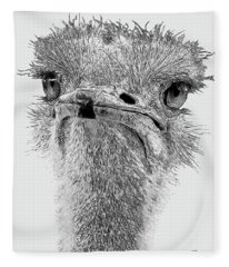 African Ostrich Sketch Fleece Blanket