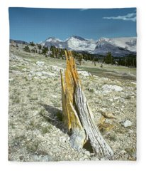 Aged To Perfection Fleece Blanket