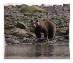 Alaskan Brown Bear Dining On Mollusks Fleece Blanket