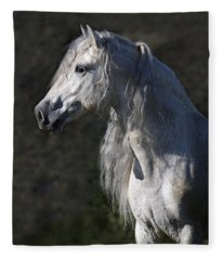 Alejandro Fleece Blanket