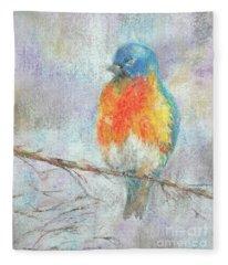 Alight Fleece Blanket