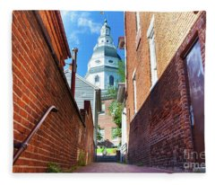 Alley View Of Maryland State House  Fleece Blanket