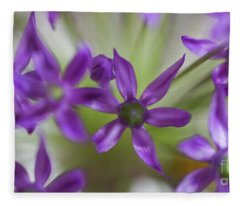 Allium Aflatunense Fleece Blanket