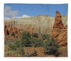 Along Panorama Trail Fleece Blanket