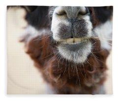 Alpaca #1 Fleece Blanket