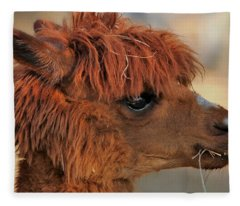 Alpaca Portrait Fleece Blanket