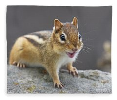 Alvinnn... Fleece Blanket