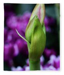 Amaryllis Bud Fleece Blanket