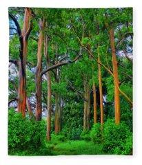 Amazing Rainbow Eucalyptus Fleece Blanket