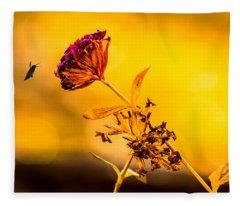 Amazon Cherry Fleece Blanket