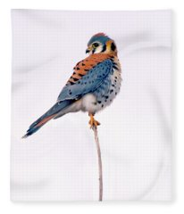 Amercian Kestrel Fleece Blanket