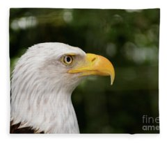 America The Great Fleece Blanket