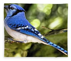 Blue Jay Bokeh Fleece Blanket