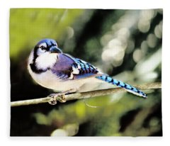 American Blue Jay On Alert Fleece Blanket
