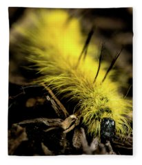 American Dagger Moth Caterpillar Fleece Blanket