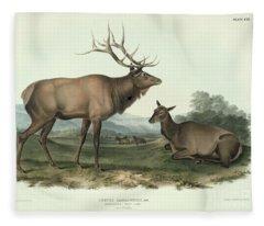 American Elk Fleece Blanket