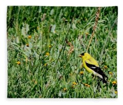 American Goldfinch  Fleece Blanket