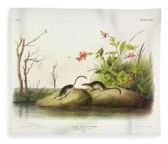 American Marsh-shrew Fleece Blanket
