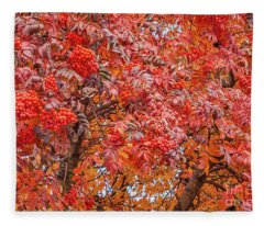 American Mountain Ash In Autumn Fleece Blanket