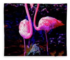 American Pink Flamingos Orlando Fl 3030300148 Fleece Blanket