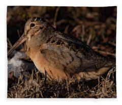American Woodcock With A Meal Fleece Blanket