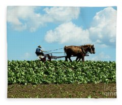 Amish Farmer With Horses In Tobacco Field Fleece Blanket