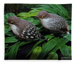 An Old Couple These Two Birds Fleece Blanket