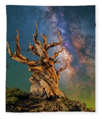 Ancient Beauty Fleece Blanket